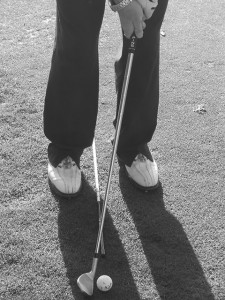 short-chipping1